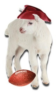 baby goat in colonial hat with football